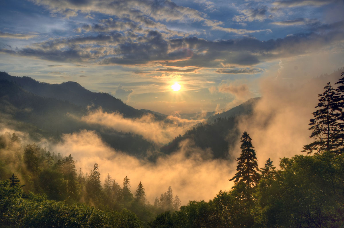Take This Mini Road Trip to Capture Some of the Best Photography in the Great Smoky Mountains National Park