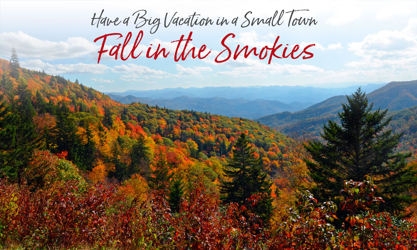 Fall Color Forecast For The Smoky Mountains Near Bryson City Nc Sylva, nc average temperature is 55.1f, which ranked #819 in north carolina. smoky mountains near bryson city nc