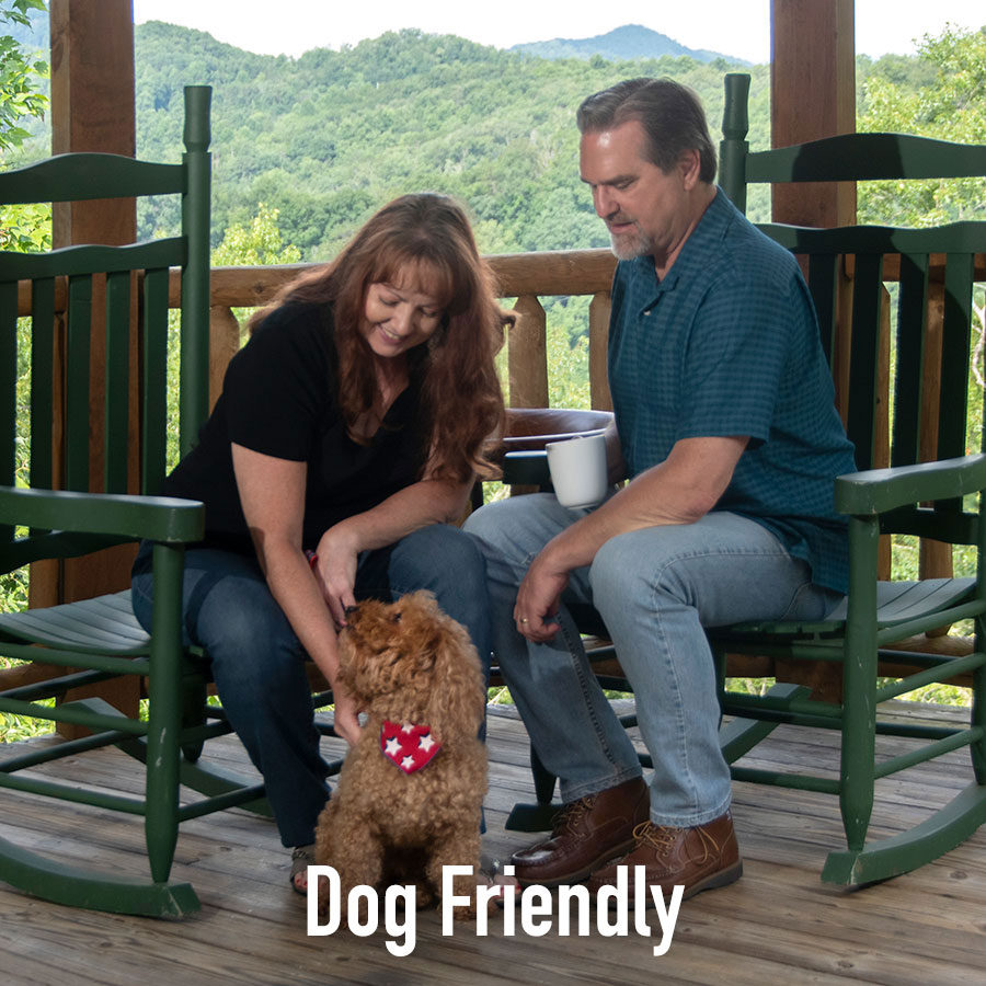 Lodging with your dog