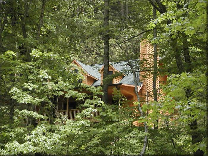 Cabin Rentals Near Bryson City Nc Pet Friendly Cabins